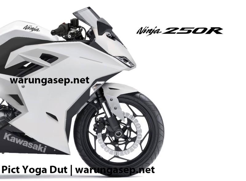 Kawasaki Ninja 250r1