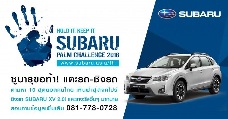 Palm2016th 01