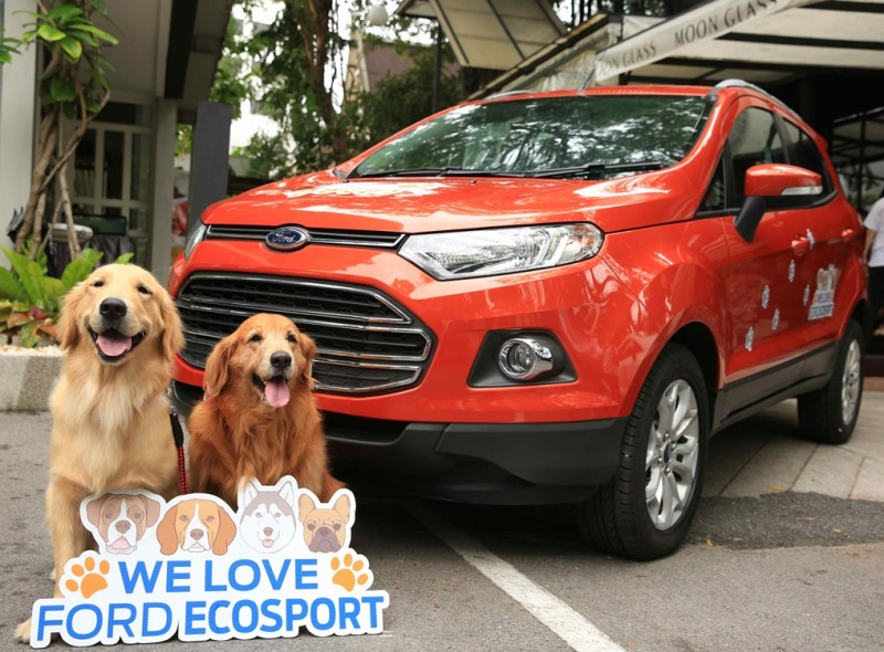 Ford Travelling Tips With Dogs 1